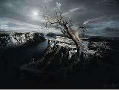 motivating  Surreal modern land tree  neo-surrealism visionary  Modern Surrealism Wallpaper