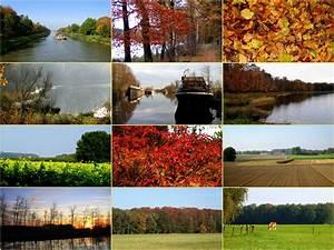 Schöne Herbstbilder Kostenlos : herbstbilder foto bild jahreszeiten herbst schnee ~ A.2002-acura-tl-radio.info Haus und Dekorationen