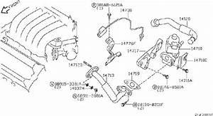 Nissan Quest Bracket Harness  Egr