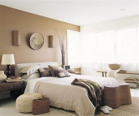 brown feature wall inspirations paint 1000 images about paintright colac brown interior colour