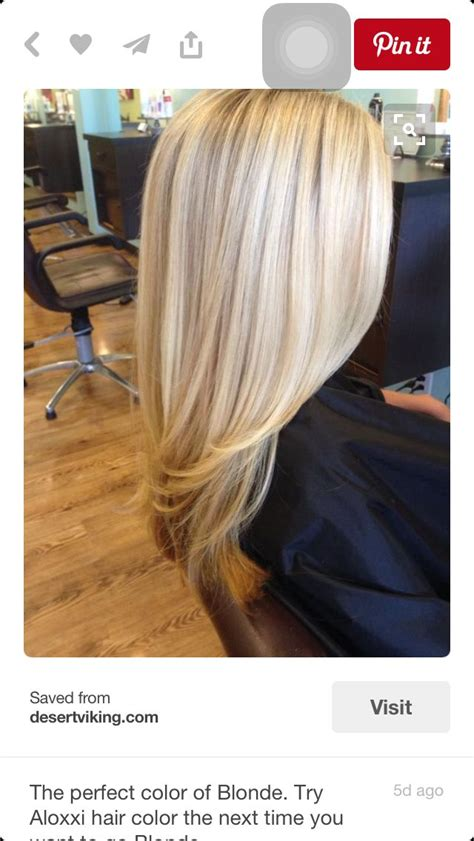Shade Of Hair by 25 Best Ideas About Shades Of On