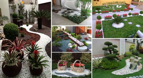 indoor plants low maintenance garden design ideas with pebbles