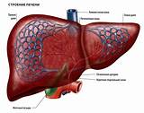 Лекарство от бессонницы при циррозе печени