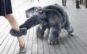 Salbei Einfrieren Oder Trocknen : antistax elefant kraut und r ben elefanten ~ Orissabook.com Haus und Dekorationen
