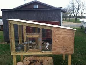 off the ground kennels google search house ideas for With in ground dog house