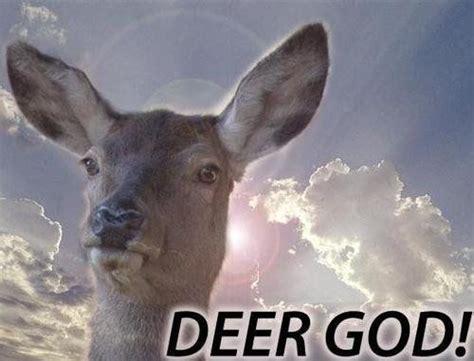 Oh Deer Meme - deer god meme collection