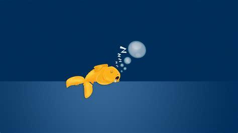 Sad Gold Fish 1920 X 1080 Hdtv 1080p Wallpaper