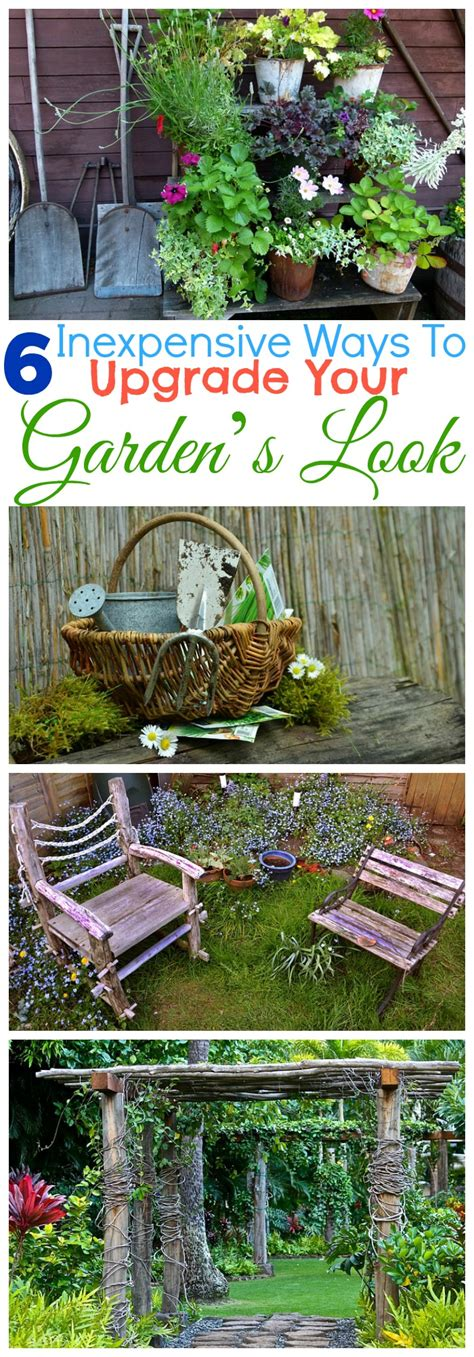 cheap ways to do your garden 6 inexpensive ways to upgrade your garden s look miss frugal mommy