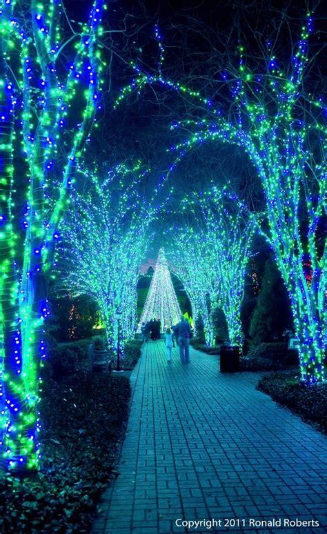 botanical gardens cristmas lights atlanta botanical gardens lights atlanta this is fantastic great