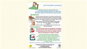 Educational Material  Infographic  About Chickenpox