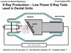 Dental X Ray Unit Diagram Pictures To Pin On Pinterest