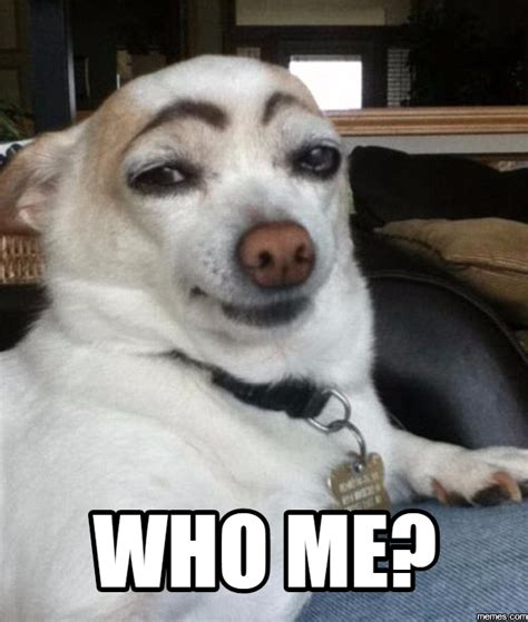 Who Me Meme - home memes com