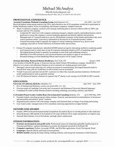 good resume examples professional experience With great resume examples