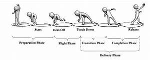 3. Sequence of events and phases of the shot put An ...
