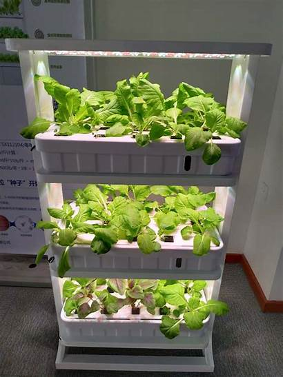 Hydroponic System Desktop Systems Growing Hydroponics Led