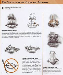 Drawing Tutorial. | How To Draw A Nose | Pinterest ...
