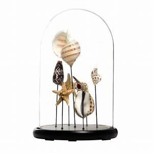 Deko Aus Glas : deko glocke beauvoir aus glas h 38 cm maisons du monde ~ Watch28wear.com Haus und Dekorationen