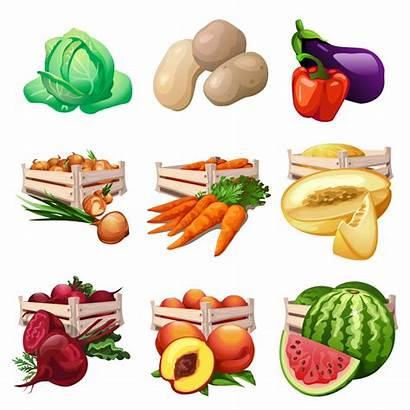 Vegetable Vegetables Clipart Fruit Cartoon Transparent Illustration