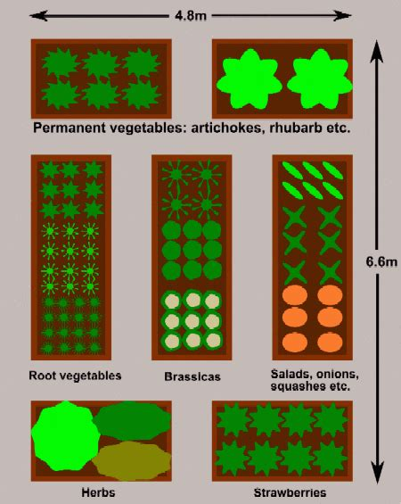 easy plan  raised beds  planting crops  blocks