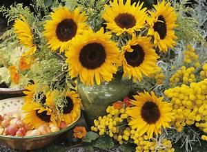 100 Modern Decoration Beautiful Flower Garden Homemade