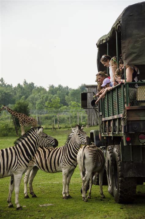 Safari Expedition - Le Parc Safari