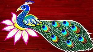 Beautiful, And, Best, Peacock, Rangoli, Designs