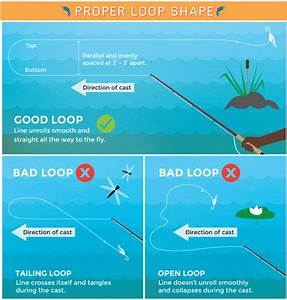 Loop Shapes For Fly Casting  Saltwater Fishing Tip