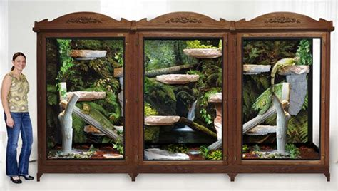 Mega Iguana House. I Could Make This A Ball Python Cage Easily. Salazar Would Love It Remove Green Tea Stains Carpet Best Cleaner For Pet And Odors How To Clean Bacon Grease From Rosedale In Fort Worth Tx Mohawk Group Tile Old Stain La Carpeta Del Ciudadano Barcelona Red Party Invitations Templates