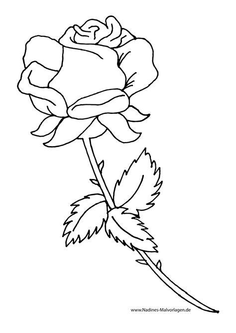 rote rose zum selbst ausmalen nadines ausmalbilder