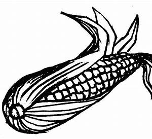 Ear Of Corn Clipart Black And White & Ear Of Corn Clip Art ...