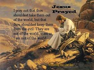 JESUS WORDS | SMALL RAIN | Page 2