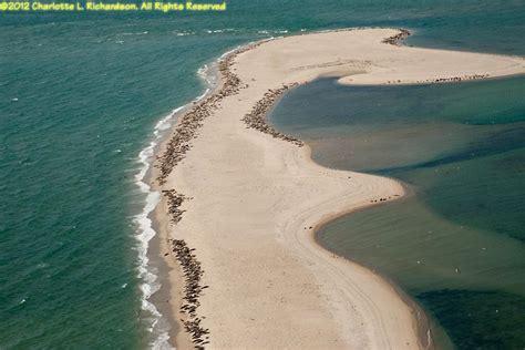 Aerial Photo Gallery: Muskeget Island