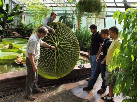 Botanischer Garten Des Kit öffnungszeiten by Kit Botanischer Garten Startseite