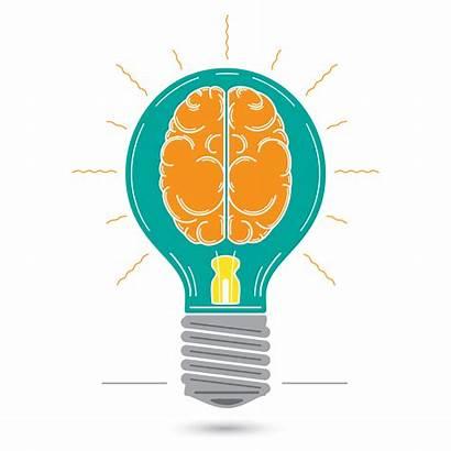 Decoding Reading Strategies Fluency Comprehension Brain Intervention