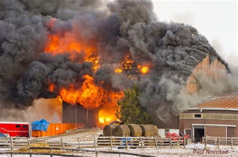 Barn Fires by Barn Fires Killed Nearly 3 Million Animals In Four Years
