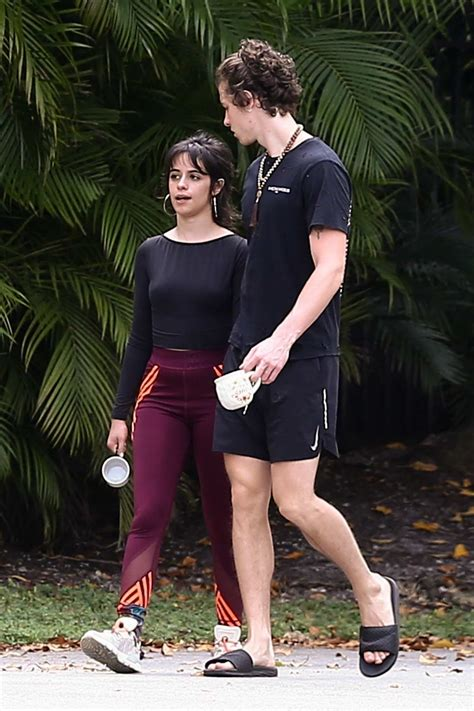 camila cabello  shawn mendes hold hands   step