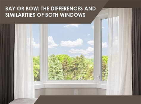 bay  bow  differences  similarities   windows