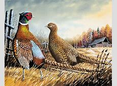 Entries sought for Wisconsin Wild Turkey, Pheasant and