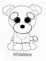 Beanie Boo Coloring Pages Ty Boos Whiskers Puppy Party Kleurplaten Sanaas Colouring Printable Siwa Jojo Babies Sheets Cute Baby Dog sketch template