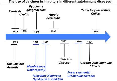 calcineurin inhibitors  years