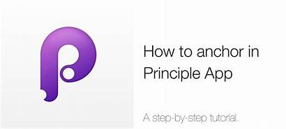 Principle App Anchor Animation Anything