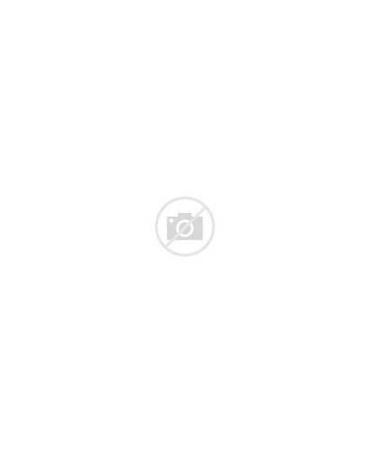 Memes Cartoons Virus Imgflip Meme Ashes Covidiots