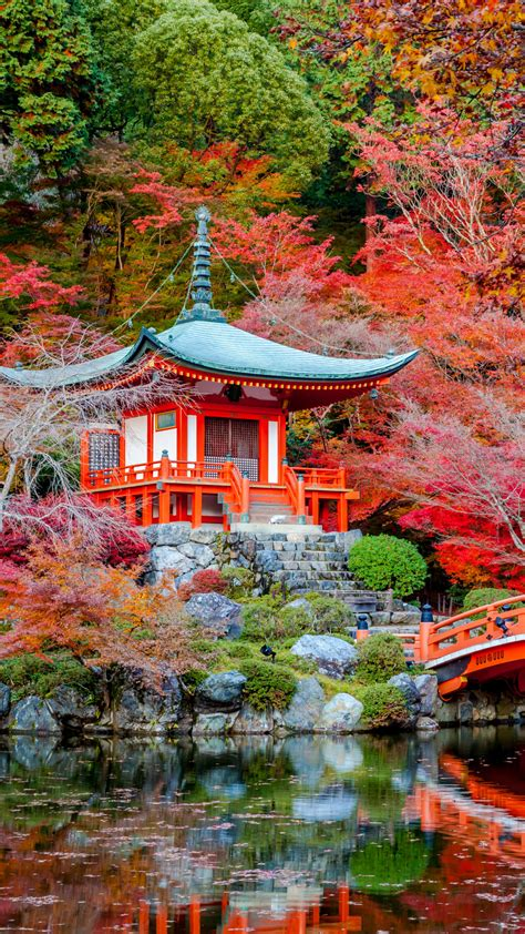 garden japanese wallpapers mobile iphone daigo ji japan landscape hd gardens autumn religious night temple fall landscapes kyoto resolution