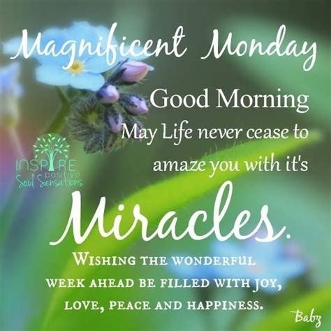 magnificent monday pictures   images