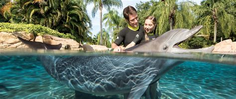 Discovery Cove Orlando Tickets by All Inclusive Family Resort In Orlando Florida