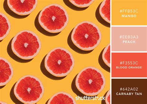 101 color combinations to inspire your next design