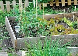 Carre De Jardin Potager : cr er un carr potager dans son jardin sem jardin ~ Premium-room.com Idées de Décoration
