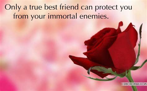 red roses  friendship quotes quotesgram