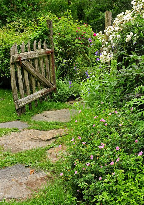 cottage garden walkway  thomas schoeller
