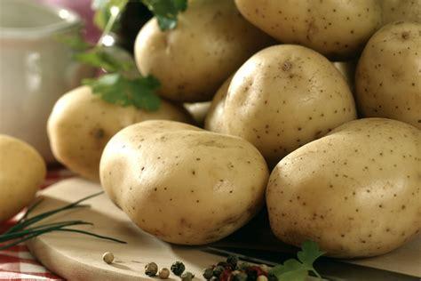 pomme de terre cuisine des pommes de terre pour tous les goûts et tous les plats